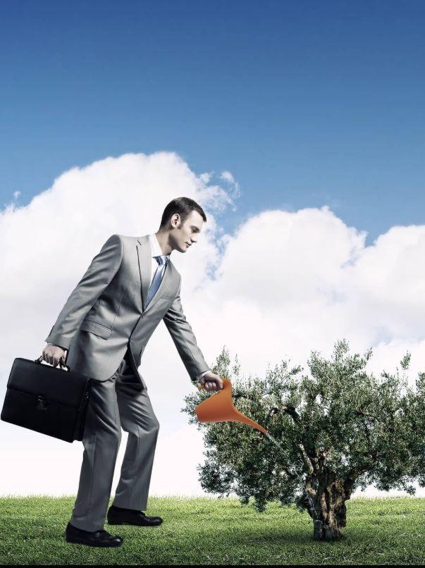 הנהלת חשבונות לחברות
